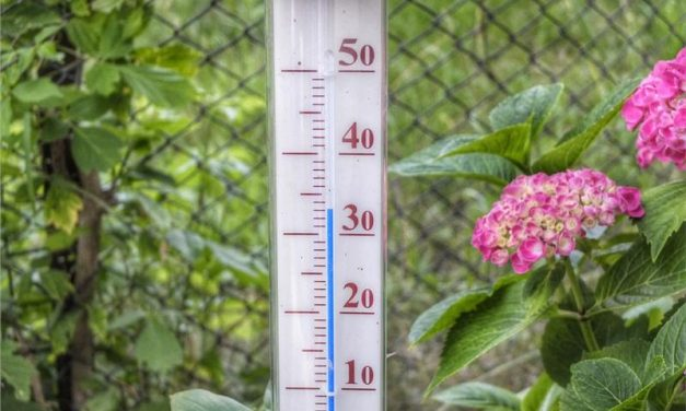Hitzewelle: Hinweise des Bevölkerungsschutzes