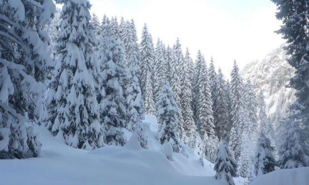 Februar war überdurchschnittlich warm, aber auch schneereich